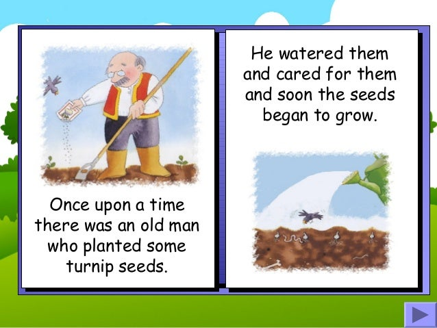 The enormous turnip story book Slide 2