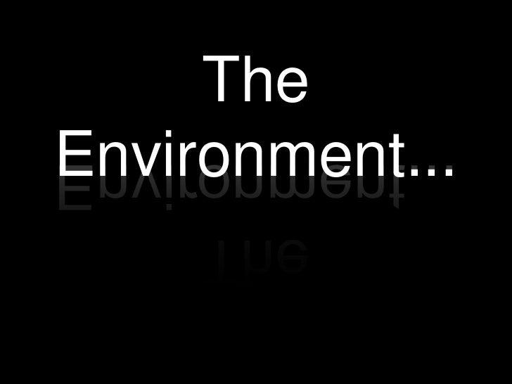 TheEnvironment...