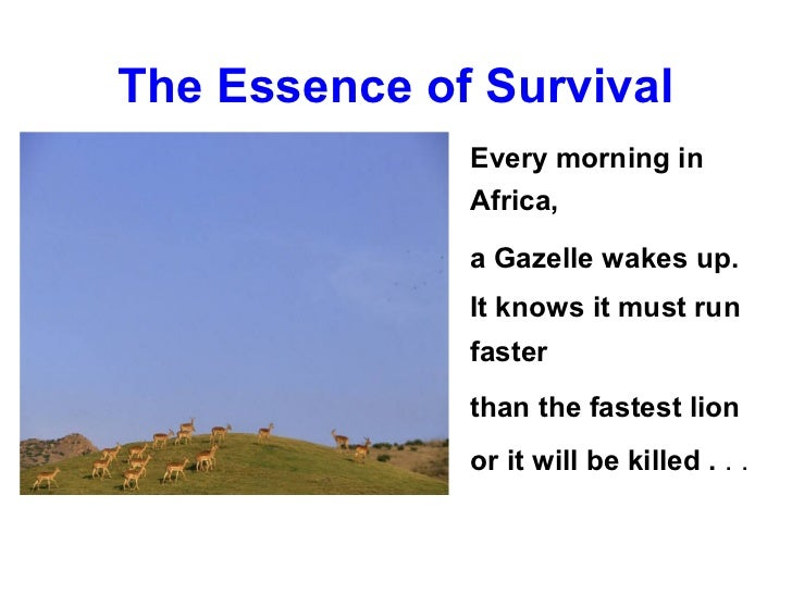 The Essence of Survival              Every morning in              Africa,              a Gazelle wakes up.              I...