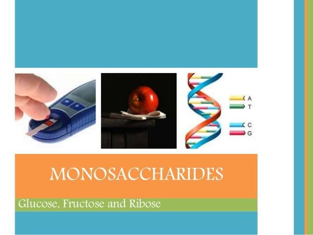 Glucose, Fructose and Ribose MONOSACCHARIDES