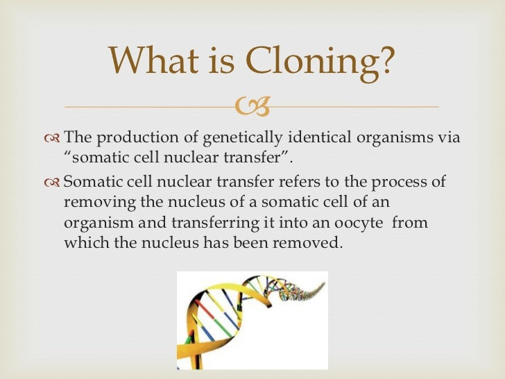 understanding the process of human cloning Understanding natural cloning clones are also subject to a shorter lifespan due to the age of the cells used in the cloning process human cloning has a.