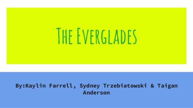 TheEverglades By:Kaylin Farrell, Sydney Trzebiatowski & Taigan Anderson