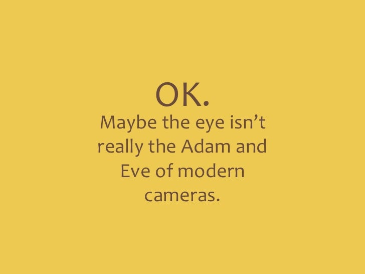OK. <br />Maybe the eye isn't really the Adam and Eve of modern cameras.<br />