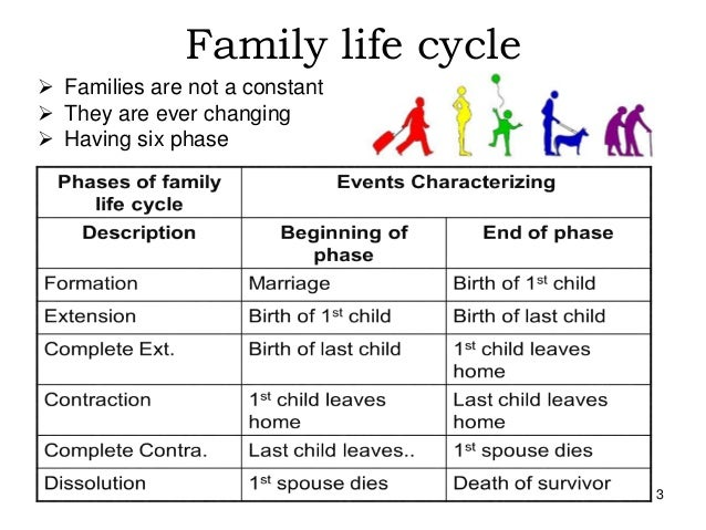 changing structure and function of family Today there is not the same consensus of family structure and lifestyles that existed in the 1950s when nearly everyone conformed  society is changing.