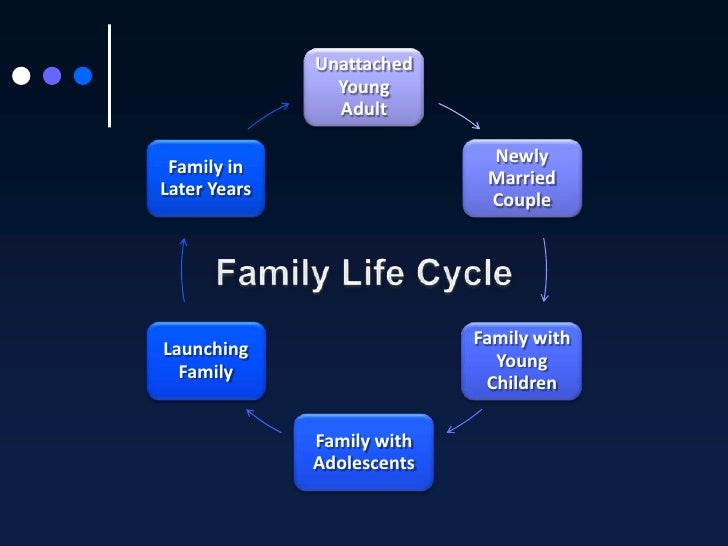 the traditional family life cycle A lifecycle is a series of stages families go through as the structure of the family  changes however, not every family follows the life cycle in order or description.