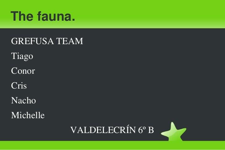 The fauna.<br />GREFUSA TEAM<br />Tiago<br />Conor<br />Cris<br />Nacho<br />Michelle<br />                         VALDEL...