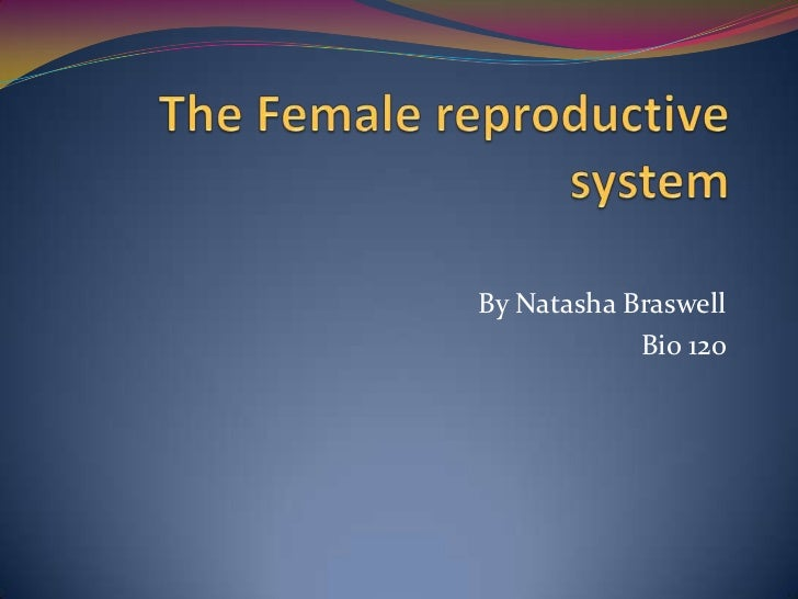 The Female reproductive system<br />By Natasha Braswell<br />Bio 120<br />