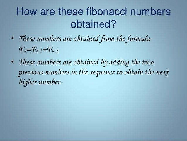 The fibonacci sequence Slide 3