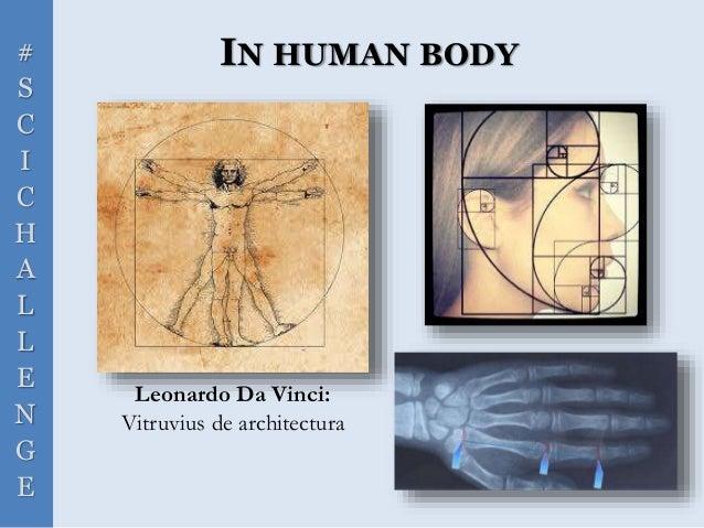 # S C I C H A L L E N G E IN HUMAN BODY Leonardo Da Vinci: Vitruvius de architectura