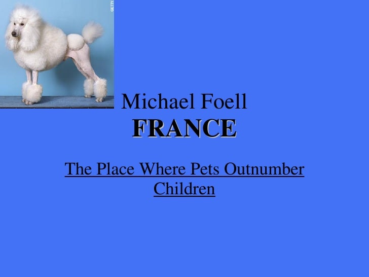 Michael Foell FRANCE The Place Where Pets Outnumber Children