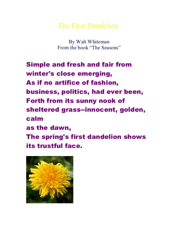 "The First Dandelion            By Walt Whiteman        From the book ""The Seasons""Simple and fresh and fair fromwinters cl..."