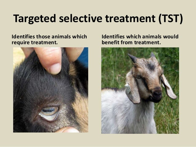 Targeted selective treatment (TST) Identifies those animals which require treatment. Identifies which animals would benefi...