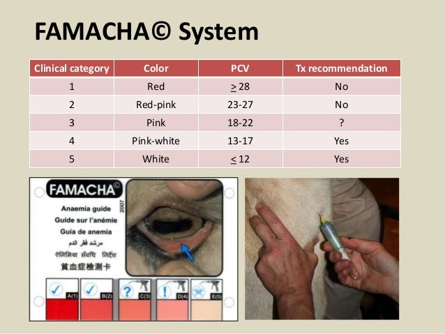 FAMACHA© System Clinical category Color PCV Tx recommendation 1 Red > 28 No 2 Red-pink 23-27 No 3 Pink 18-22 ? 4 Pink-whit...
