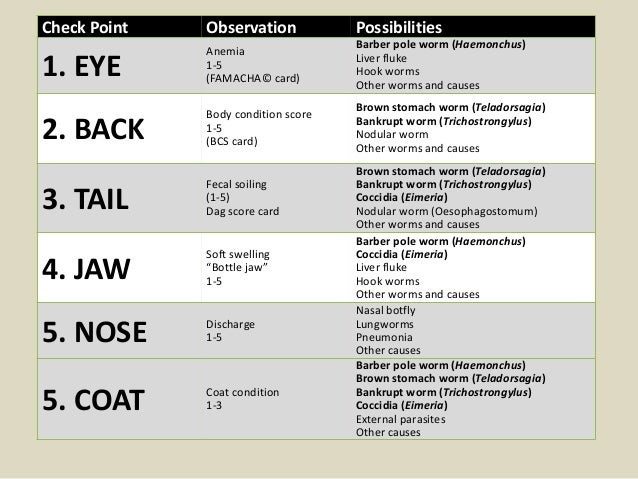 Check Point Observation Possibilities 1. EYE Anemia 1-5 (FAMACHA© card) Barber pole worm (Haemonchus) Liver fluke Hook wor...