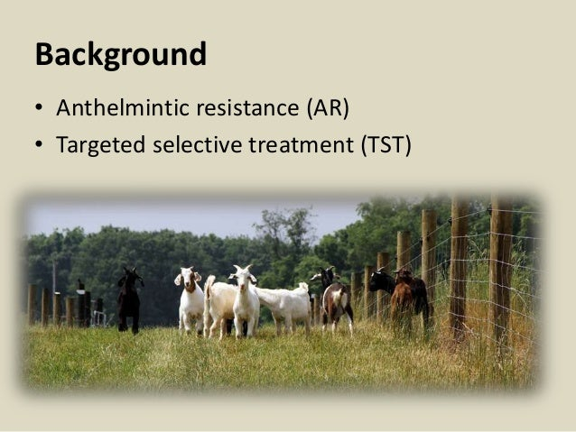 Background • Anthelmintic resistance (AR) • Targeted selective treatment (TST)