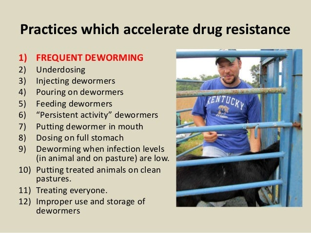 Practices which accelerate drug resistance 1) FREQUENT DEWORMING 2) Underdosing 3) Injecting dewormers 4) Pouring on dewor...