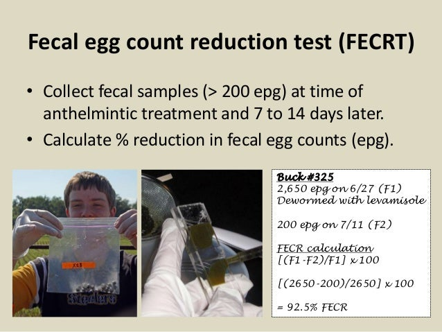 Fecal egg count reduction test (FECRT) • Collect fecal samples (> 200 epg) at time of anthelmintic treatment and 7 to 14 d...