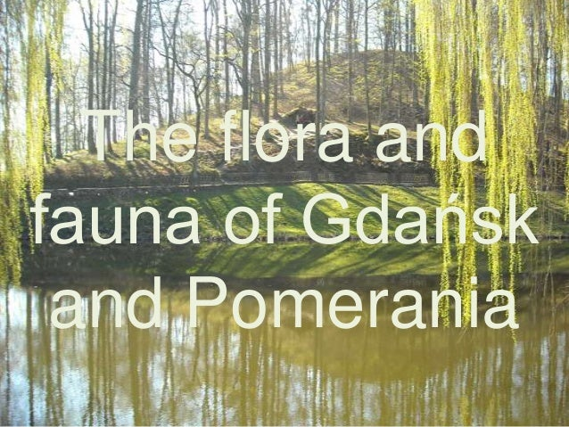The flora and fauna of Gdańsk and Pomerania