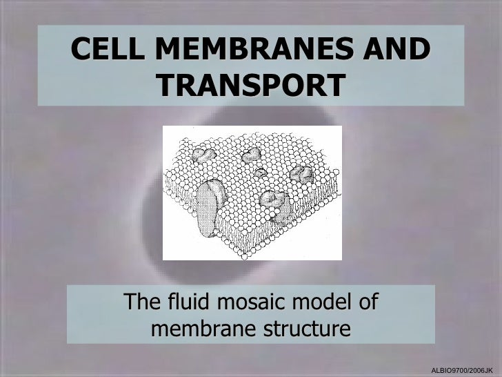 CELL MEMBRANES AND     TRANSPORT  The fluid mosaic model of    membrane structure                              ALBIO9700/2...