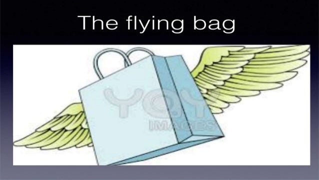 ing bag  The fly