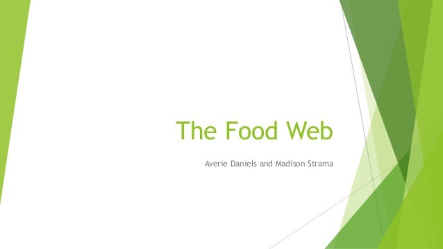 The Food Web Averie Daniels and Madison Strama