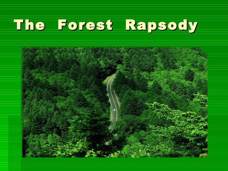 The  Forest  Rapsody