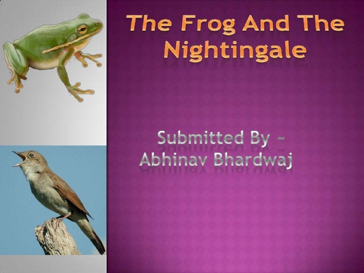 "the frog the nightingale The poem the frog and the nightingale  - a descriptive summary in the poem, ""the frog and the nightingale"" the poet vikram seth has adopted the features of modern poetry in following the pattern of mixed metre and free verse."