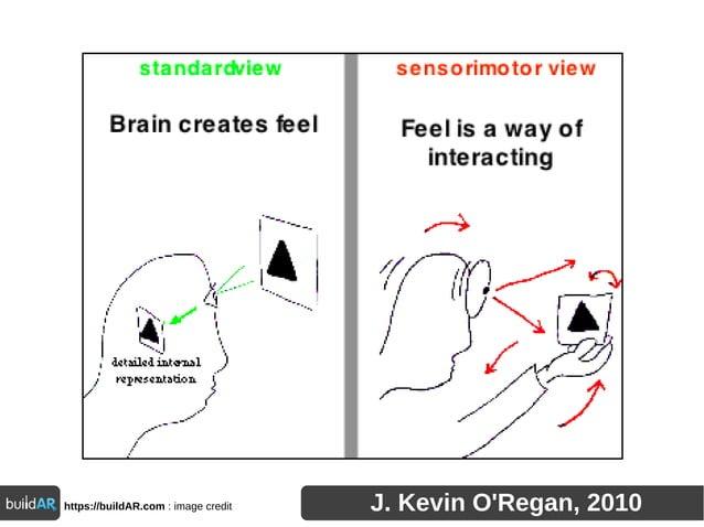 https://buildAR.com : image credit J. Kevin O'Regan, 2010