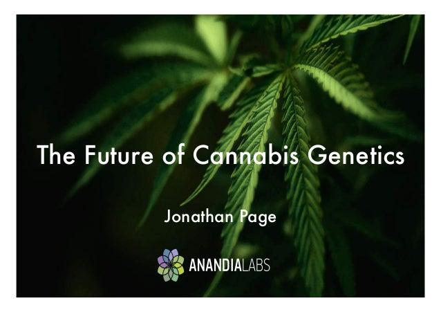 The Future of Cannabis Genetics   Jonathan Page