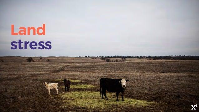Land stress