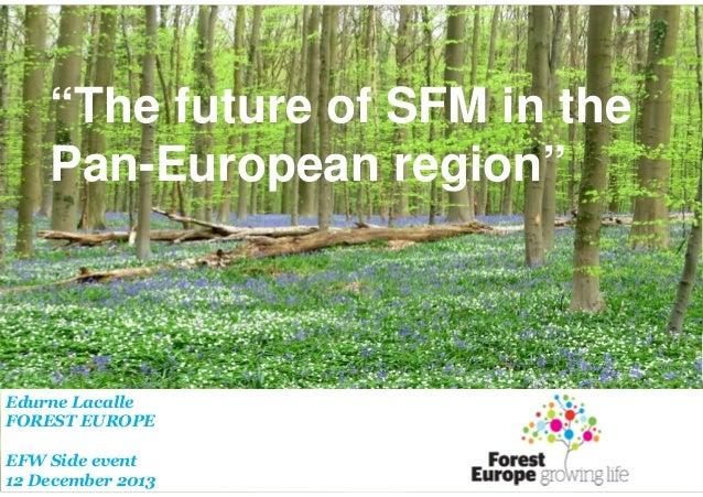 "FOREST EUROPE/EFI/METLA ""The future of SFM in the Side Event: Pan-European region"" ""20 years of SFM in the panEuropean reg..."
