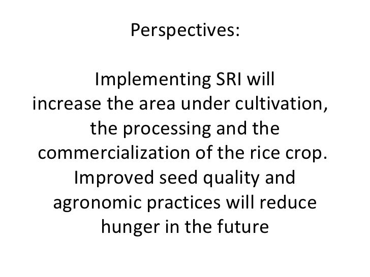 Perspectives:        Implementing SRI willincrease the area under cultivation,       the processing and the commercializat...
