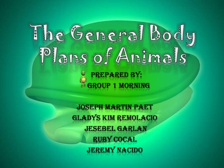 The General Body Plans of Animals<br />Prepared by:<br />Group 1 Morning <br />Joseph Martin Paet<br />Gladys Kim Remolaci...