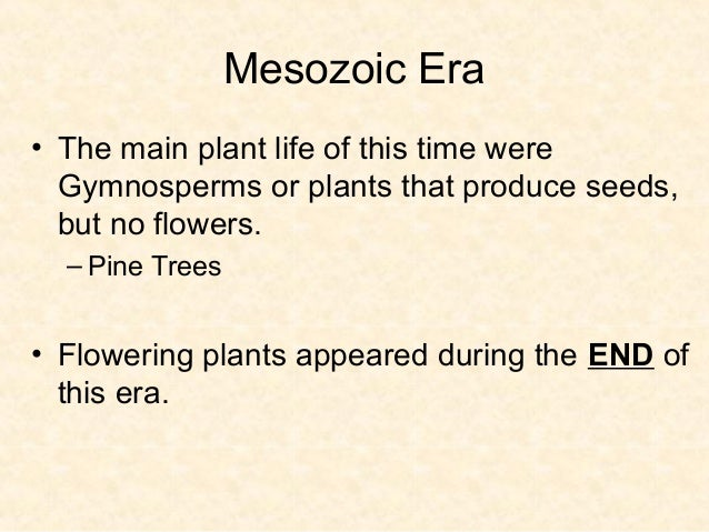 Cenozoic Era – Recent Life• Began about 65 million years ago and continues  today!!!!!  – Climate was warm and mild.  – Ma...