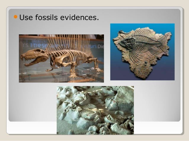 Use fossils evidences.