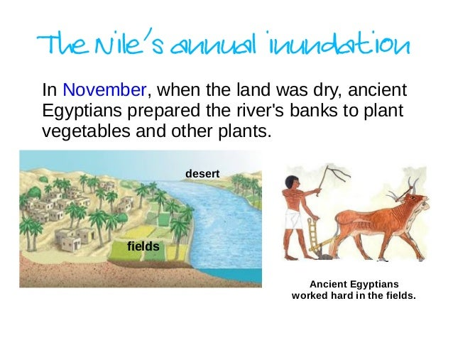gift of the nile The nile is the longest river in the world the nile river ran down the middle of ancient egypt the nile is shaped like a lotus flower, the design seen in ancient egyptian art, math, and hieroglyphics.
