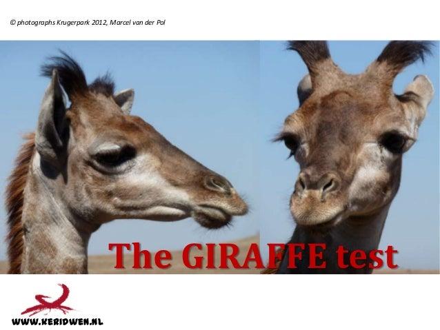 © photographs Krugerpark 2012, Marcel van der Pol                              The GIRAFFE testwww.keridwen.nl
