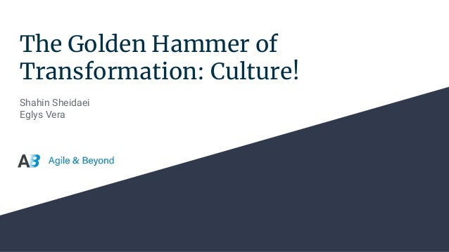 The Golden Hammer of Transformation: Culture! Shahin Sheidaei Eglys Vera