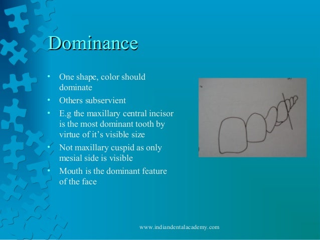 DominanceDominance • One shape, color should dominate • Others subservient • E.g the maxillary central incisor is the most...
