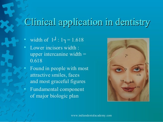 Clinical application in dentistryClinical application in dentistry • width of 1┘: 1┐= 1.618 • Lower incisors width : upper...