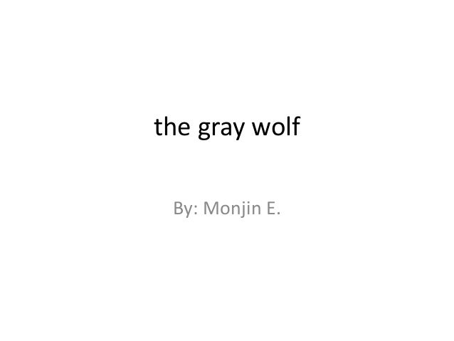 the gray wolf By: Monjin E.