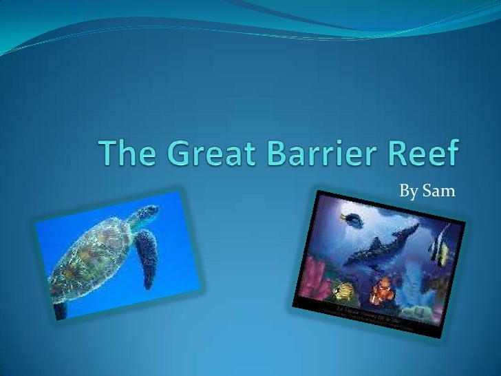 The Great Barrier Reef<br />By Sam<br />