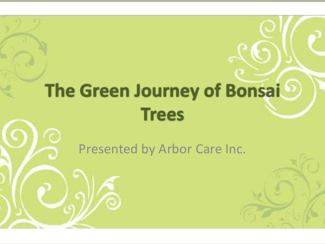 The Green Journey of Bonsai Trees Presented by Arbor Care Inc.