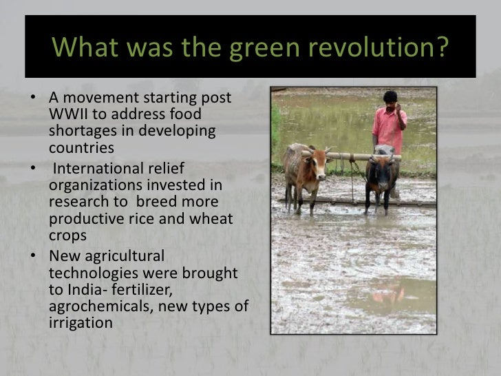 Essay on Green Revolution