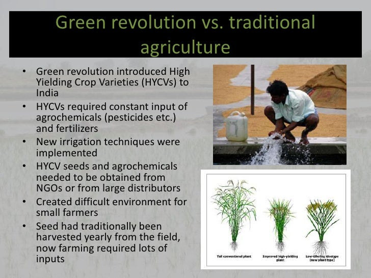 essay on food for all with green revolution The green revolution clearly averted a major food those employing an essay approach and 81 the lessons from the green revolution taught that.