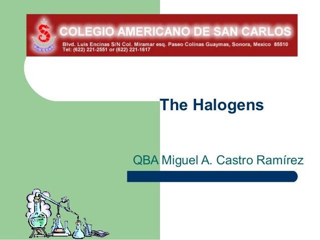 The HalogensQBA Miguel A. Castro Ramírez