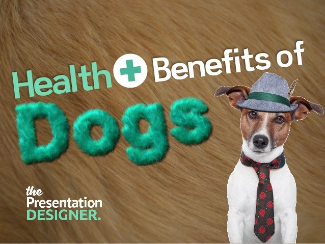 Dogs are a commitment {Years, not Days} Dogs need exercise too you know! Check you can afford & care for a Dog first (befo...