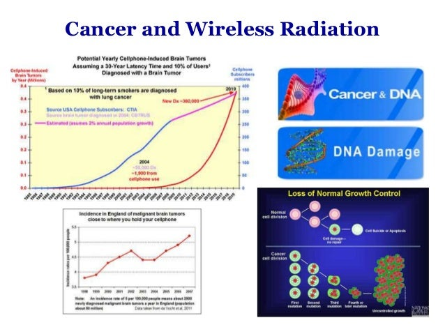 effect of wi fi radiations on sperms in vitro Motility and induce dna fragmentation in human spermatozoa in vitro by a non-thermal effect we speculate that keeping the laptops (wi-fi mode) on the lap near the testes may result in decreased.