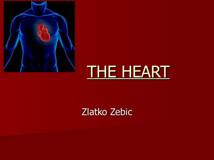 THE HEART Zlatko Zebic