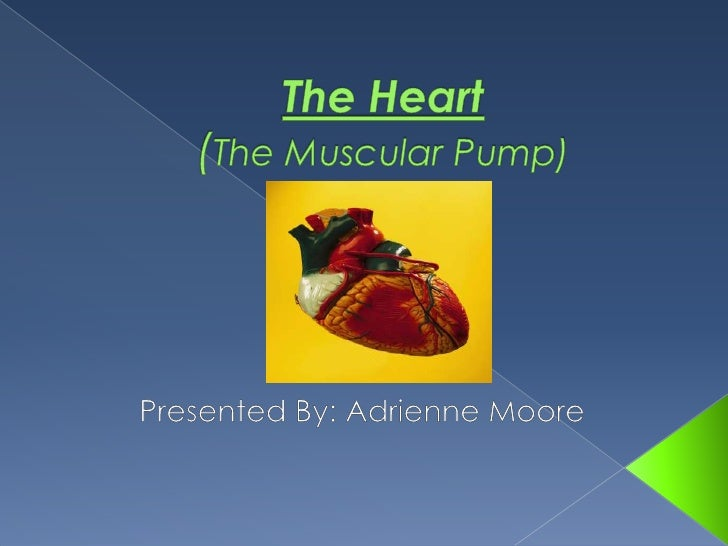 The Heart (The Muscular Pump)<br />Presented By: Adrienne Moore<br />